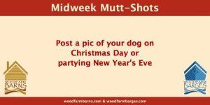 Woodfarm Barns Midweek Mutt-Shot post